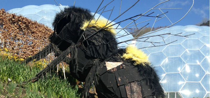 Our Bee World – The Beginning
