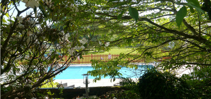 Read more about the article Guest Information – General Swimming Pool Information